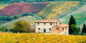 A typical farmhouse in the middle of colourful fields on our Top Class motorcycle tour of Tuscany