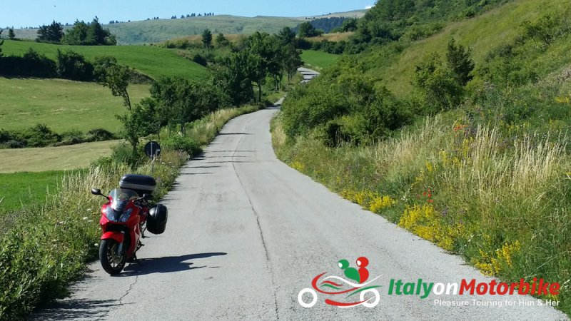 Free rider motorcycle tour, we have something for everyone!